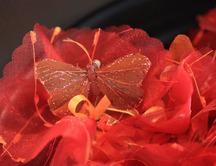 Dragéement Vôtre - Les idées cadeaux